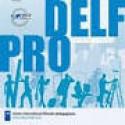 Diploma Delf Pro